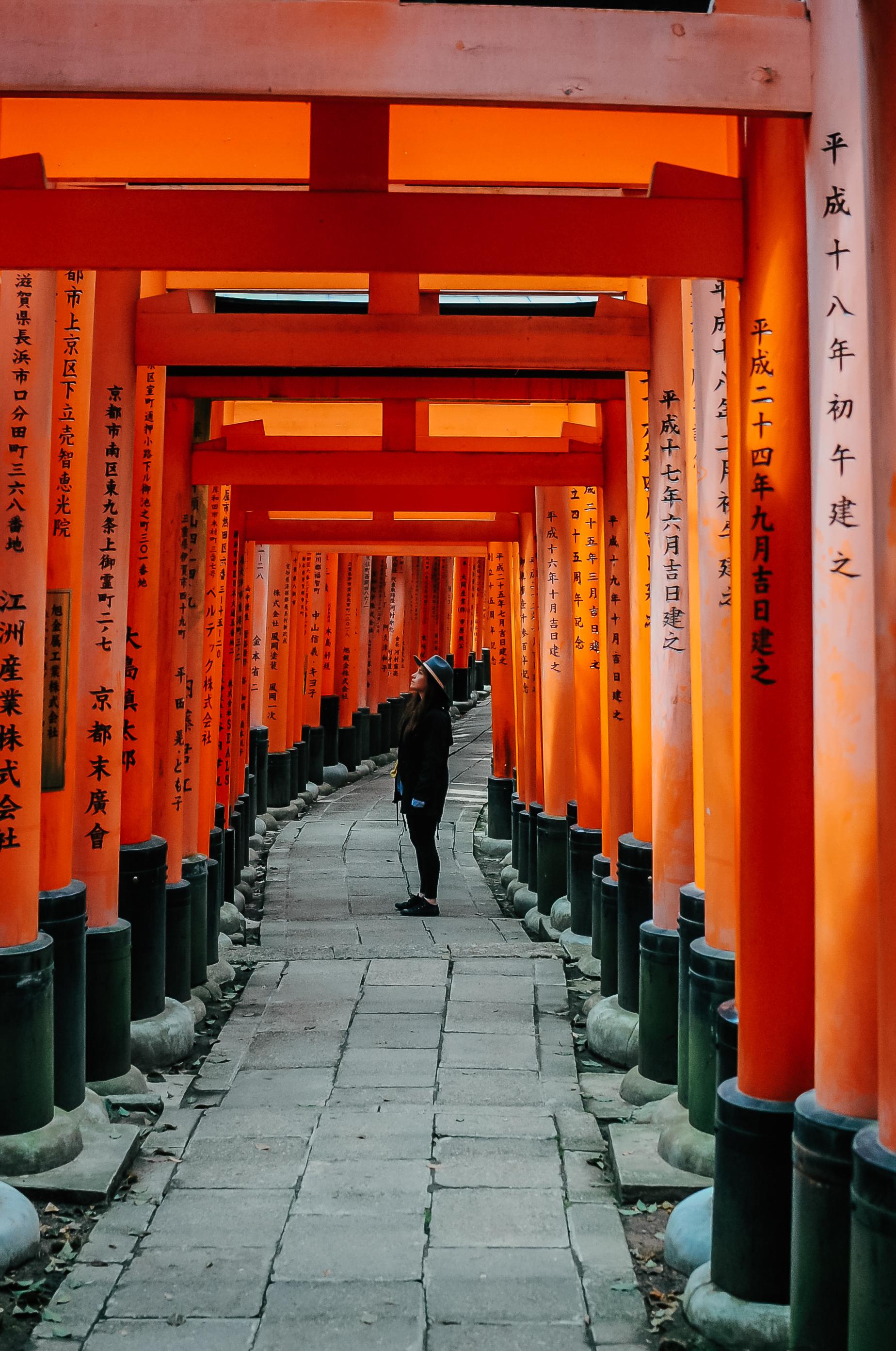 Fushimi Inari Kioto 1