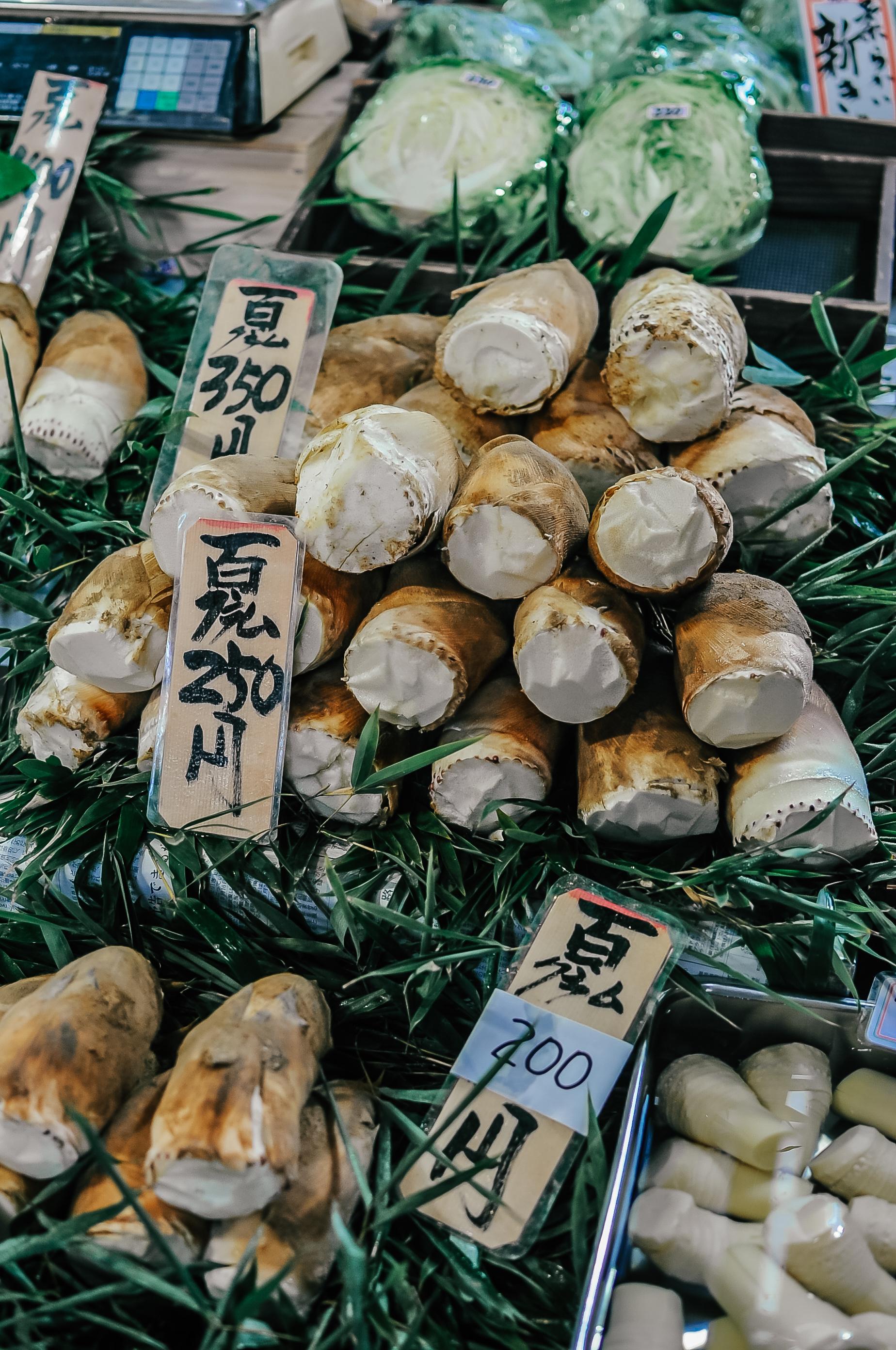 Kioto pędy bambusa